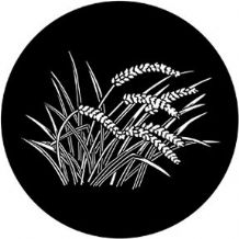 Rosco 71059 Wheat Gobo